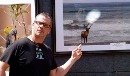 "Dan Elster, Wildlife Photographer, shows regularly at the Lithia Artisans Market Ashland, LAMA. Strange light cast on this image called ""Watching"" one afternoon at market. The moose seems to be gazing at an anomaly."